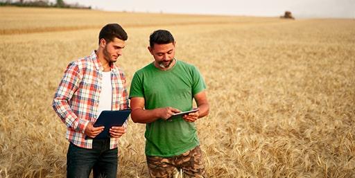 CAPa Métiers de l'Agriculture–Grandes cultures
