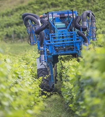 L'exploitation viti-vinicole