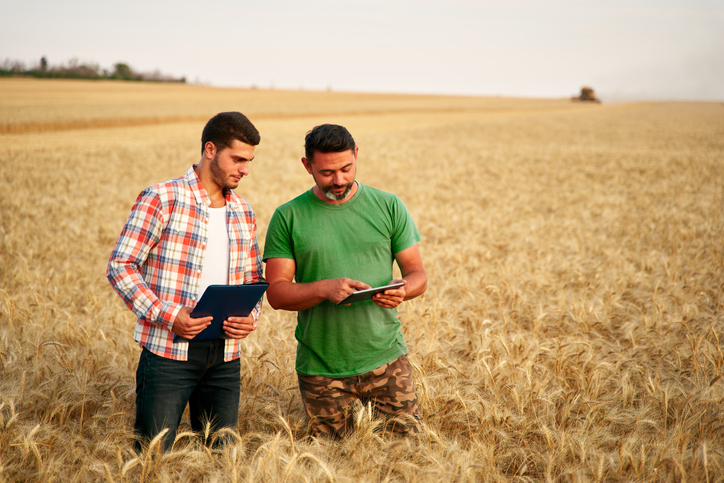 Two farmers stand in wheat stubble field, discuss harvest, crops. Senior agronomist with touch tablet pc teaches young coworker. Innovative tech. Precision farming with online data management software