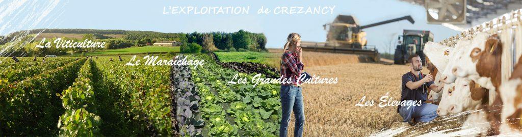 Eploitation du Legta de Crézancy