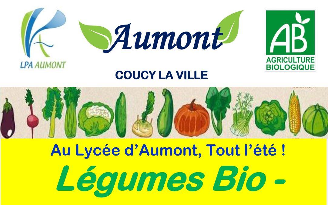 Potager du LPA d'Aumont